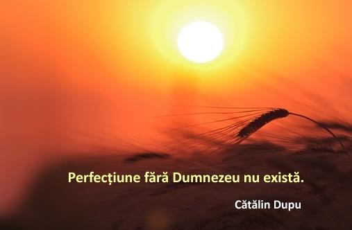 perfectiune fara Dumnezeu nu exista