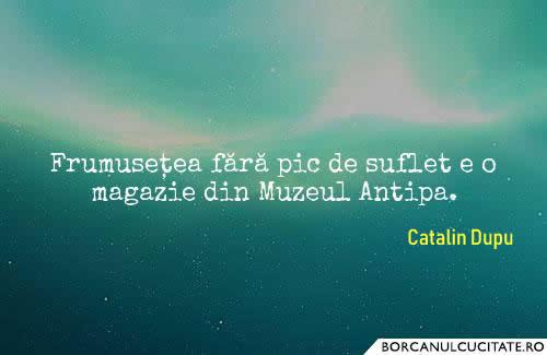 frumusete suflet_catalin dupu